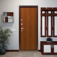 Дверь Дельта 5