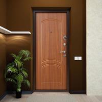 Дверь Дельта 6