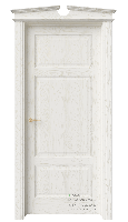 Дверь S11