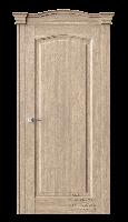 Дверь S22